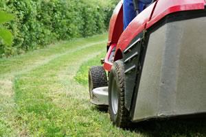 Tonte de gazon et jardin par paysagiste aumont en for Tarif tonte gazon par paysagiste